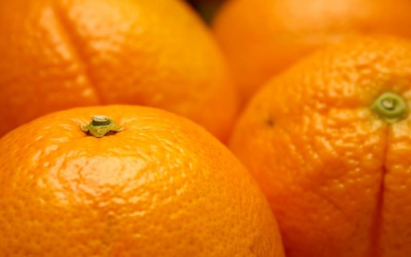 Naranjas a 0,10 euros el kilo