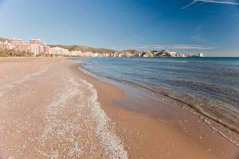 En las costas valencianas apenas queda que pescar