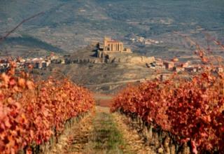 Vinos de excepción en España