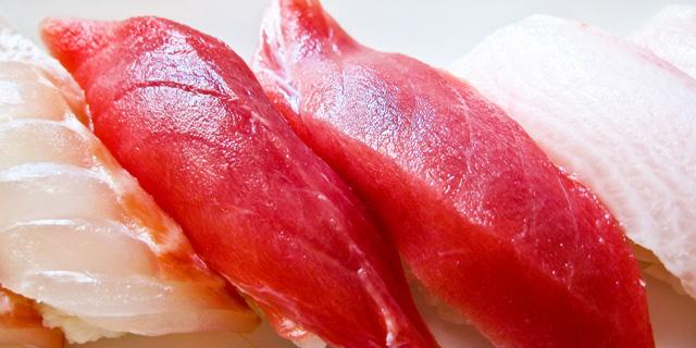 El atún rojo: mirada extraviada y cara inexpresiva…